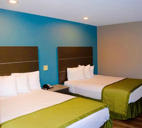 Comfortable Guestrooms